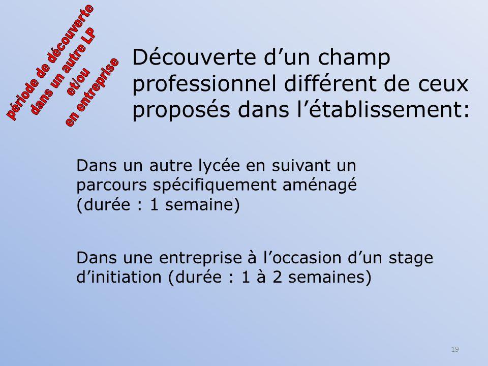 19 Découverte dun champ professionnel différent de ceux proposés dans létablissement: Dans une entreprise à loccasion dun stage dinitiation (durée : 1
