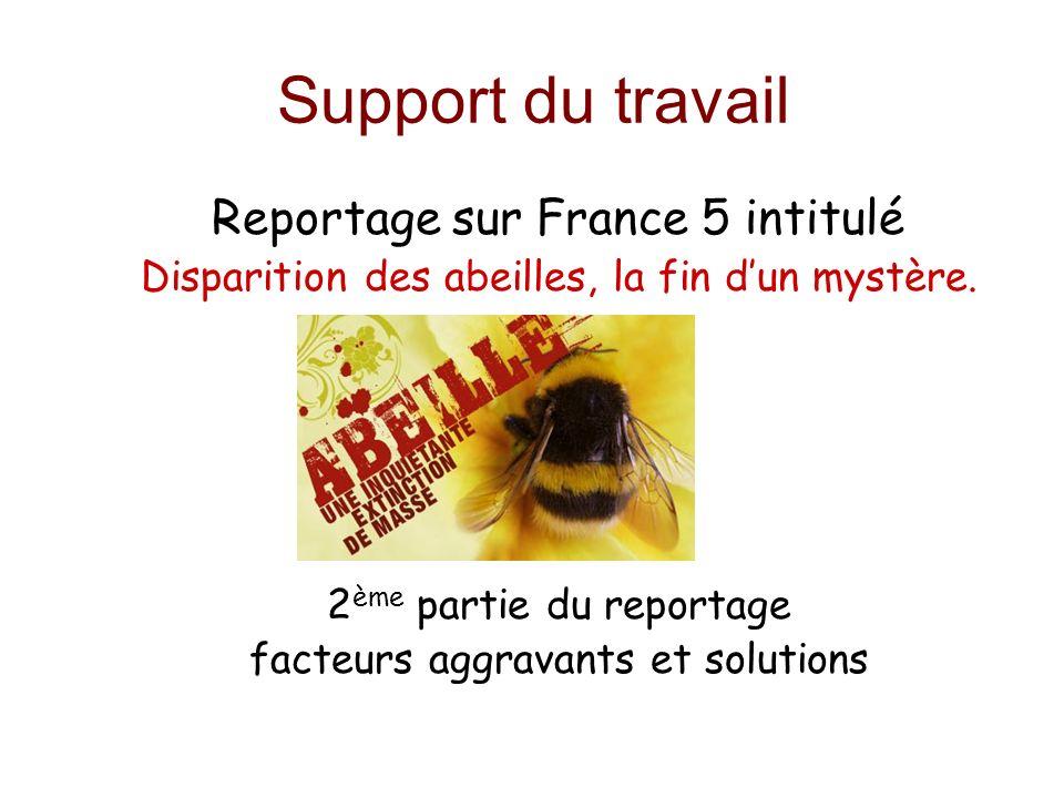 Support du travail Reportage sur France 5 intitulé Disparition des abeilles, la fin dun mystère. 2 ème partie du reportage facteurs aggravants et solu