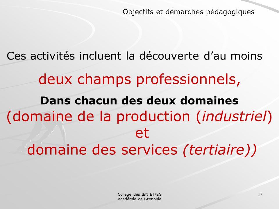 Collège des IEN ET/EG académie de Grenoble 17 Objectifs et démarches pédagogiques Ces activités incluent la découverte dau moins deux champs professio