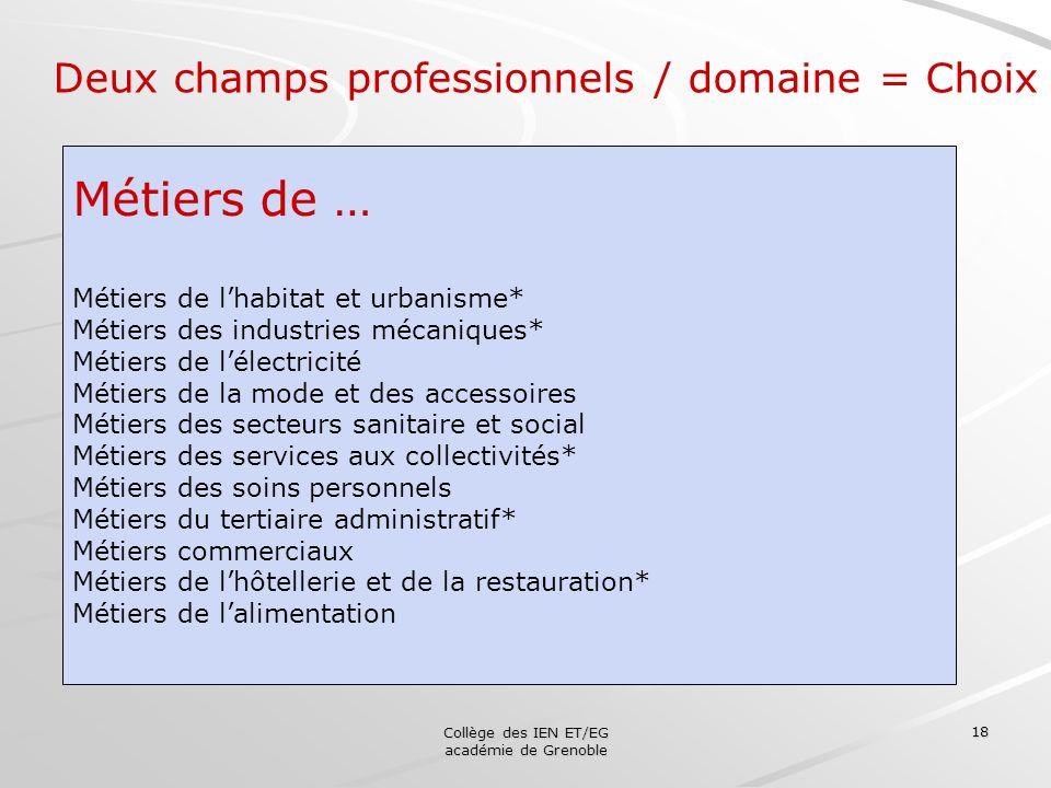 Collège des IEN ET/EG académie de Grenoble 18 Deux champs professionnels / domaine = Choix Métiers de … Métiers de lhabitat et urbanisme* Métiers des
