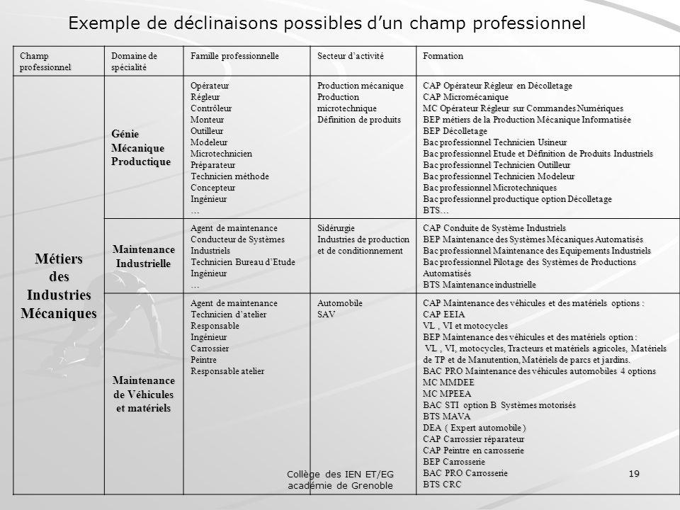 Collège des IEN ET/EG académie de Grenoble 19 Exemple de déclinaisons possibles dun champ professionnel Champ professionnel Domaine de spécialité Fami