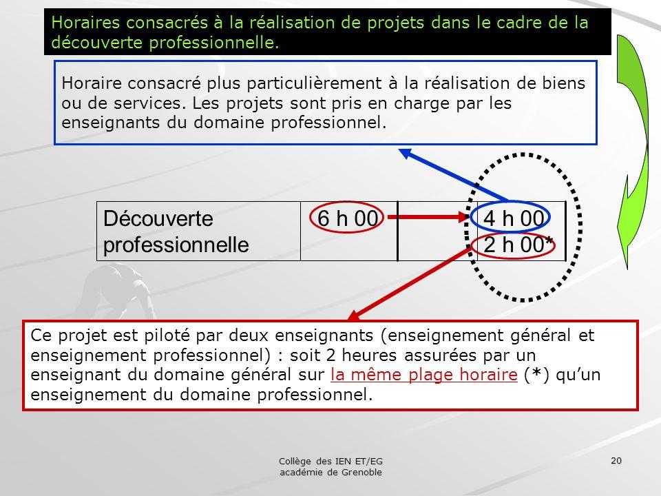 Collège des IEN ET/EG académie de Grenoble 20 Ce projet est piloté par deux enseignants (enseignement général et enseignement professionnel) : soit 2