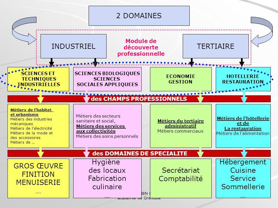 Collège des IEN ET/EG académie de Grenoble 22 2 DOMAINES INDUSTRIELTERTIAIRE SCIENCES ET TECHNIQUES INDUSTRIELLES SCIENCES BIOLOGIQUES SCIENCES SOCIAL