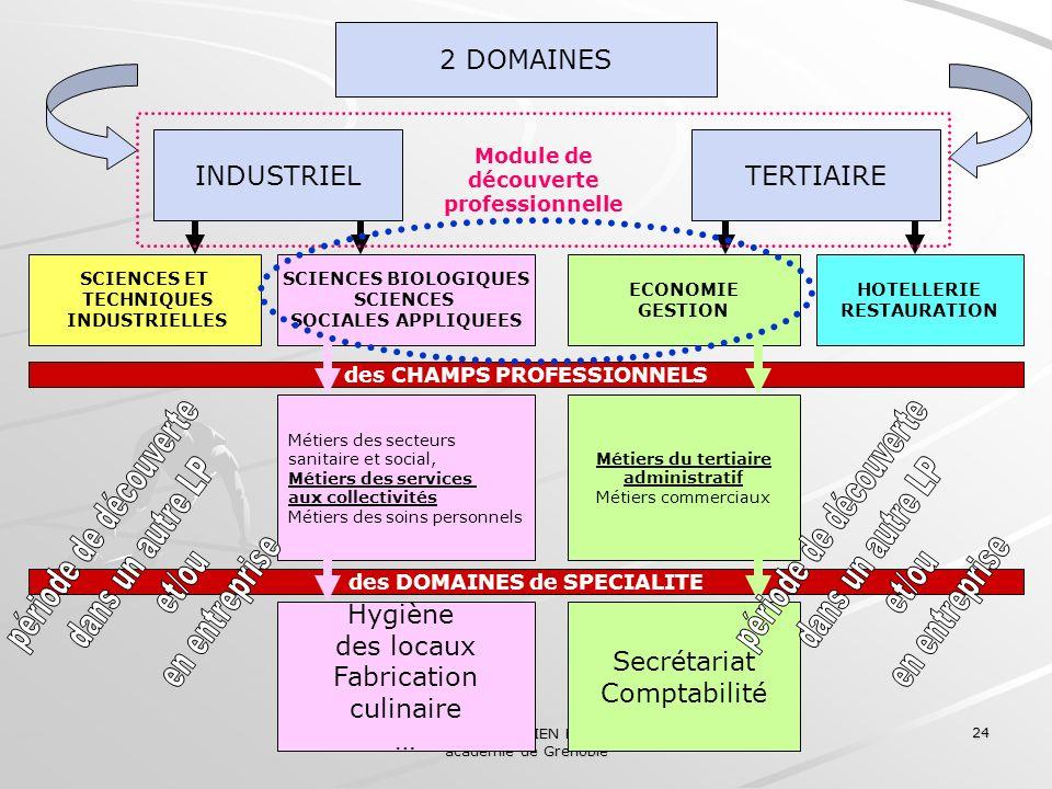 Collège des IEN ET/EG académie de Grenoble 24 2 DOMAINES INDUSTRIELTERTIAIRE SCIENCES ET TECHNIQUES INDUSTRIELLES SCIENCES BIOLOGIQUES SCIENCES SOCIAL
