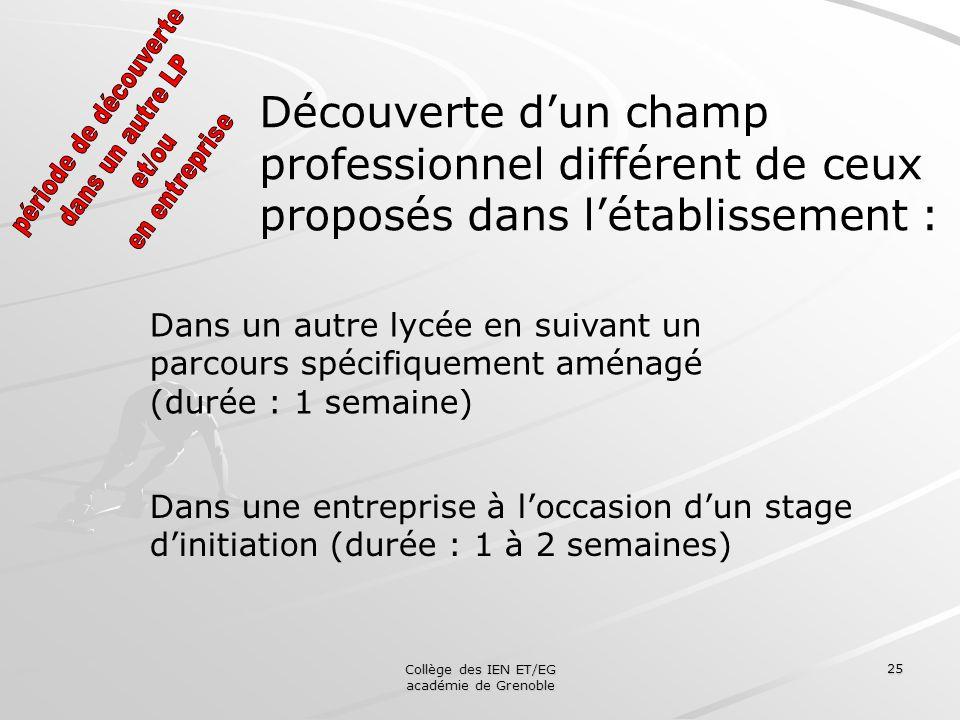 Collège des IEN ET/EG académie de Grenoble 25 Découverte dun champ professionnel différent de ceux proposés dans létablissement : Dans une entreprise