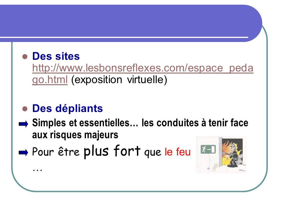 Des sites http://www.lesbonsreflexes.com/espace_peda go.html (exposition virtuelle) http://www.lesbonsreflexes.com/espace_peda go.html Des dépliants S