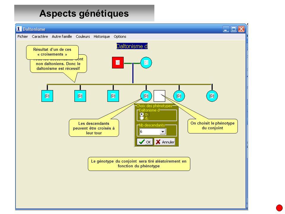 Aspects génétiques Le génotype du conjoint sera tiré aléatoirement en fonction du phénotype Les descendants peuvent être croisés à leur tour On choisi
