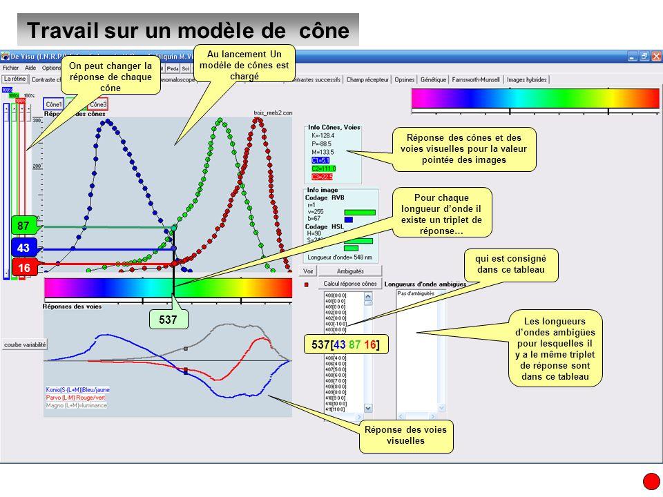 Travail sur un modèle de cône Au lancement Un modèle de cônes est chargé On peut changer la réponse de chaque cône Pour chaque longueur donde il exist