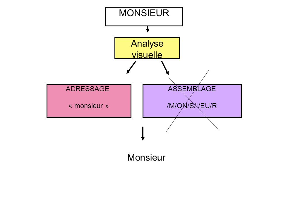 ASSEMBLAGE /M/ON/S/I/EU/R ADRESSAGE « monsieur » MONSIEUR Analyse visuelle Monsieur