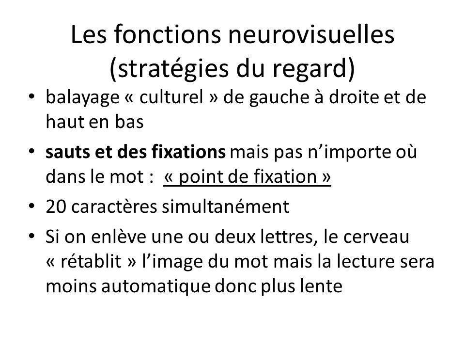 Les fonctions neurovisuelles (stratégies du regard) balayage « culturel » de gauche à droite et de haut en bas sauts et des fixations mais pas nimport