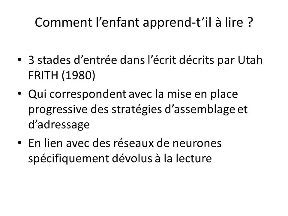 Comment lenfant apprend-til à lire ? 3 stades dentrée dans lécrit décrits par Utah FRITH (1980) Qui correspondent avec la mise en place progressive de