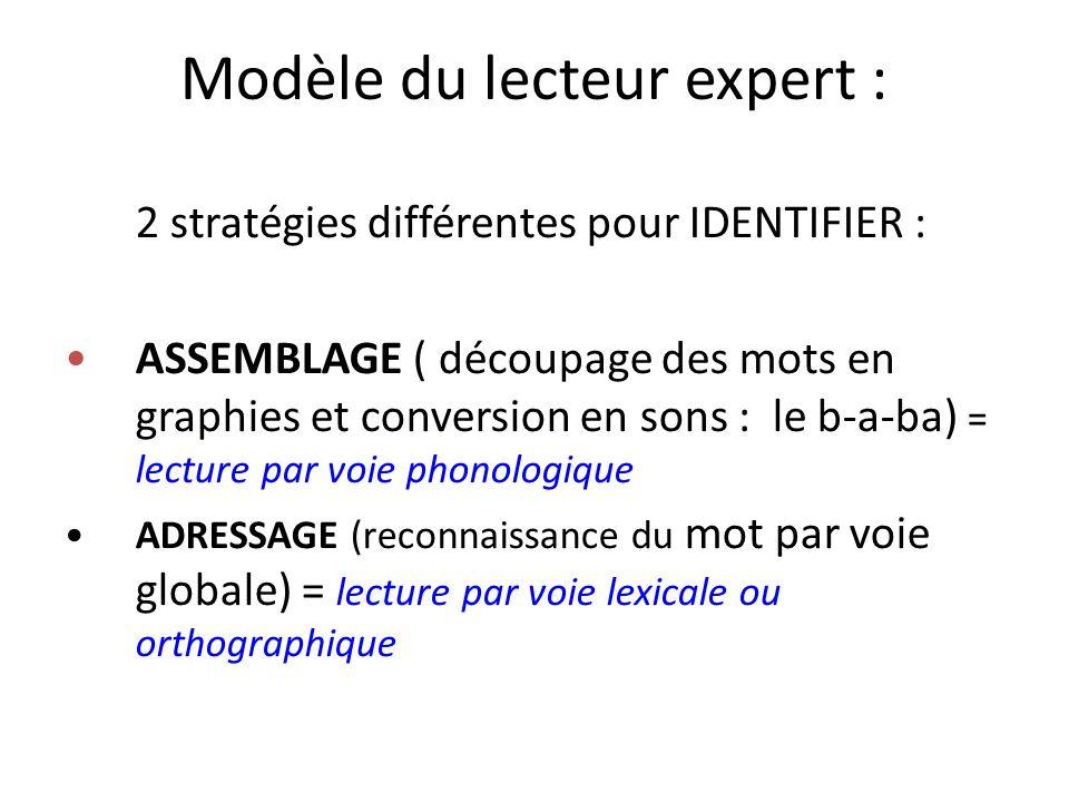 Modèle du lecteur expert : 2 stratégies différentes pour IDENTIFIER : ASSEMBLAGE ( découpage des mots en graphies et conversion en sons : le b-a-ba) =