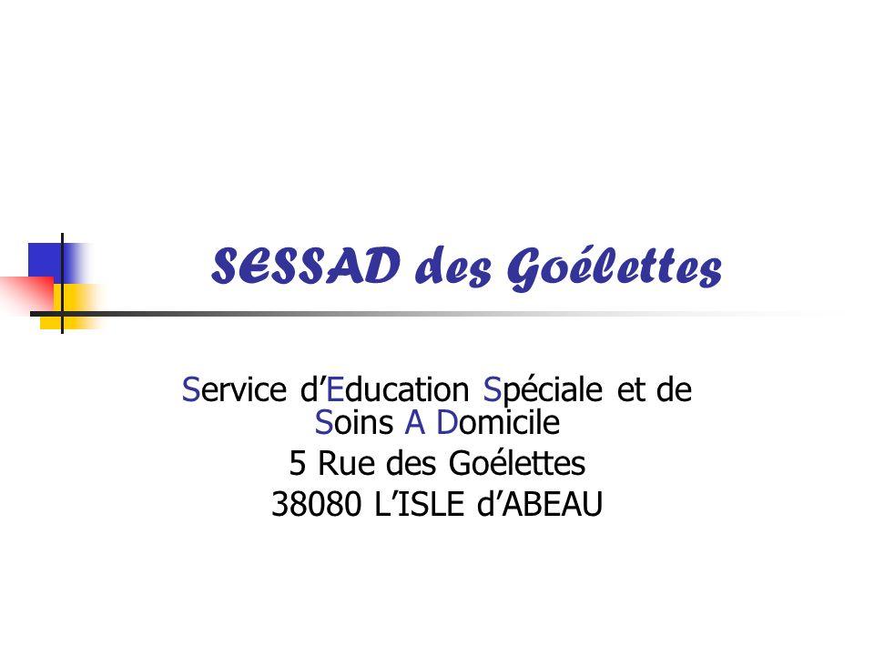 SESSAD des Goélettes : Géré par lassociation A.F.G : Agréé par la DDASS de 0 à 20 ans Partenariat avec Envol Isère Autisme 24 places pourvues, de 4 à 14 ans.