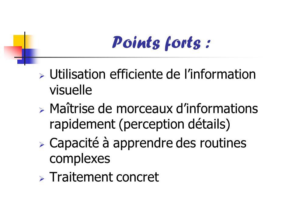 Points forts : Utilisation efficiente de linformation visuelle Maîtrise de morceaux dinformations rapidement (perception détails) Capacité à apprendre
