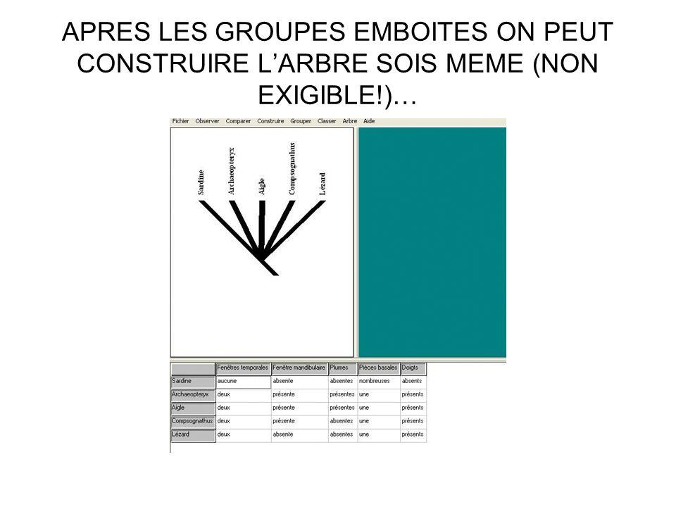 APRES LES GROUPES EMBOITES ON PEUT CONSTRUIRE LARBRE SOIS MEME (NON EXIGIBLE!)…