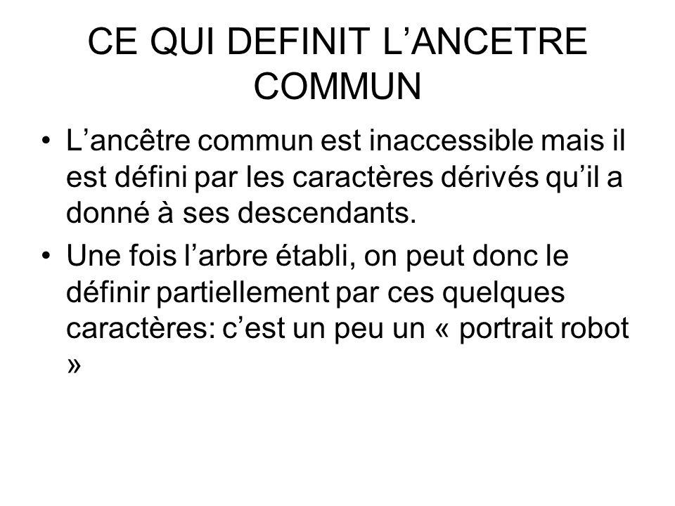 CE QUI DEFINIT LANCETRE COMMUN Lancêtre commun est inaccessible mais il est défini par les caractères dérivés quil a donné à ses descendants. Une fois