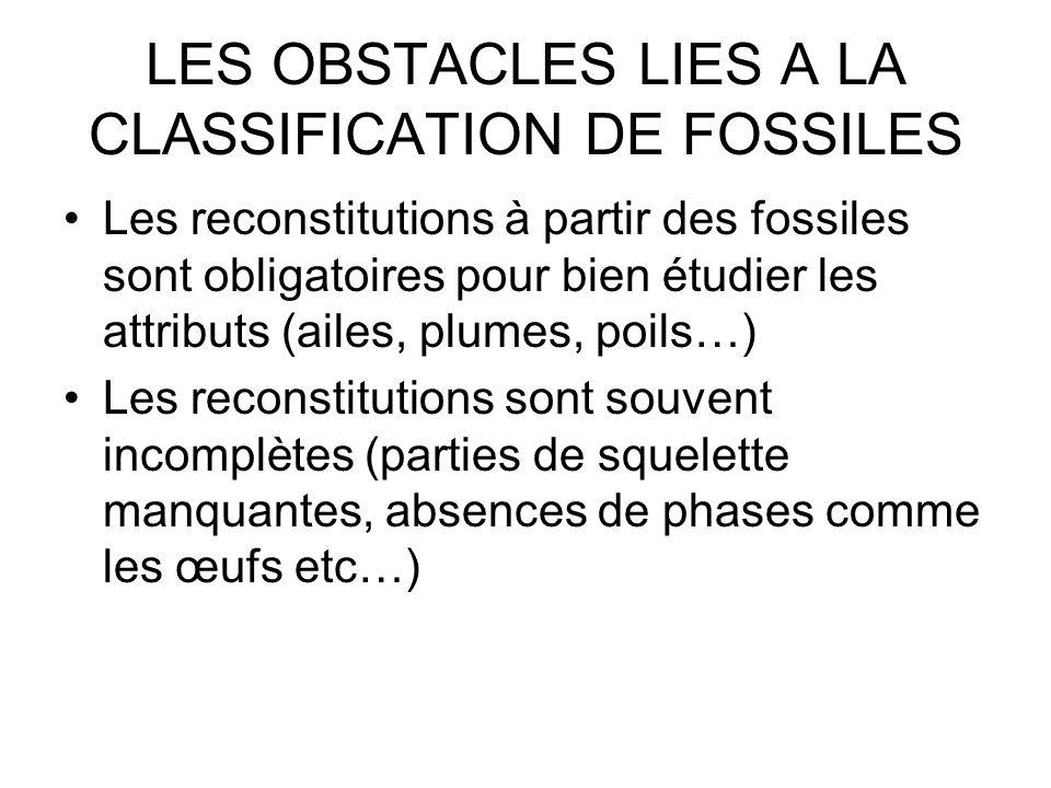LES OBSTACLES LIES A LA CLASSIFICATION DE FOSSILES Les reconstitutions à partir des fossiles sont obligatoires pour bien étudier les attributs (ailes,