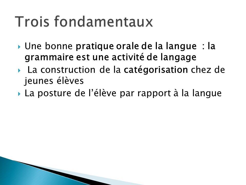 Une bonne pratique orale de la langue : la grammaire est une activité de langage La construction de la catégorisation chez de jeunes élèves La posture de lélève par rapport à la langue