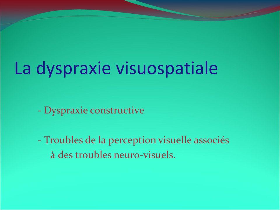 La dyspraxie visuospatiale - Dyspraxie constructive - Troubles de la perception visuelle associés à des troubles neuro-visuels.
