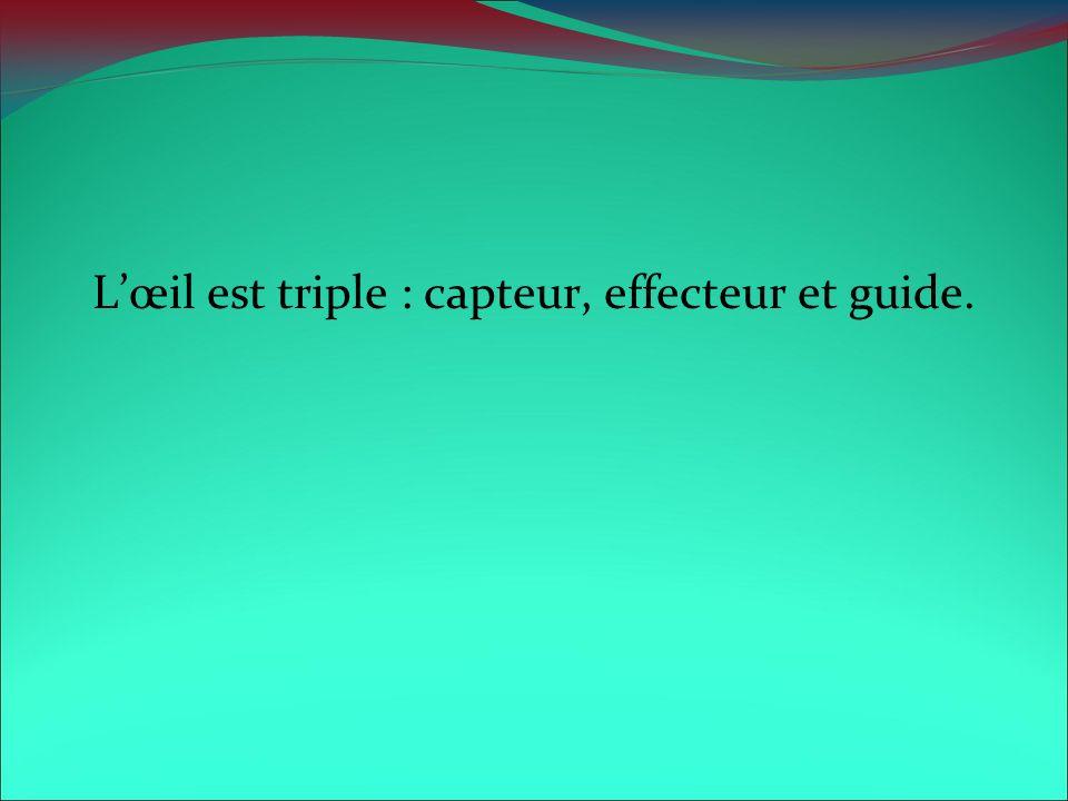 Lœil est triple : capteur, effecteur et guide.