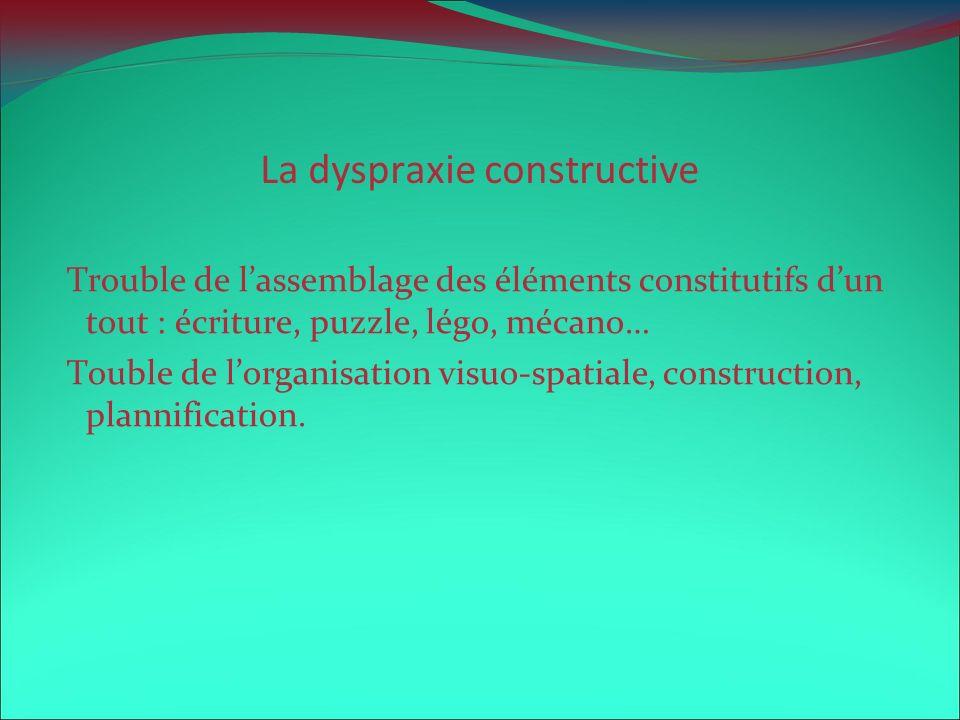 La dyspraxie constructive Trouble de lassemblage des éléments constitutifs dun tout : écriture, puzzle, légo, mécano… Touble de lorganisation visuo-sp