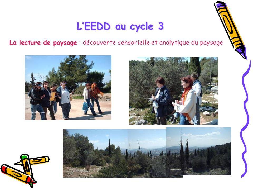 LEEDD au cycle 3 La lecture de paysage La lecture de paysage : découverte sensorielle et analytique du paysage