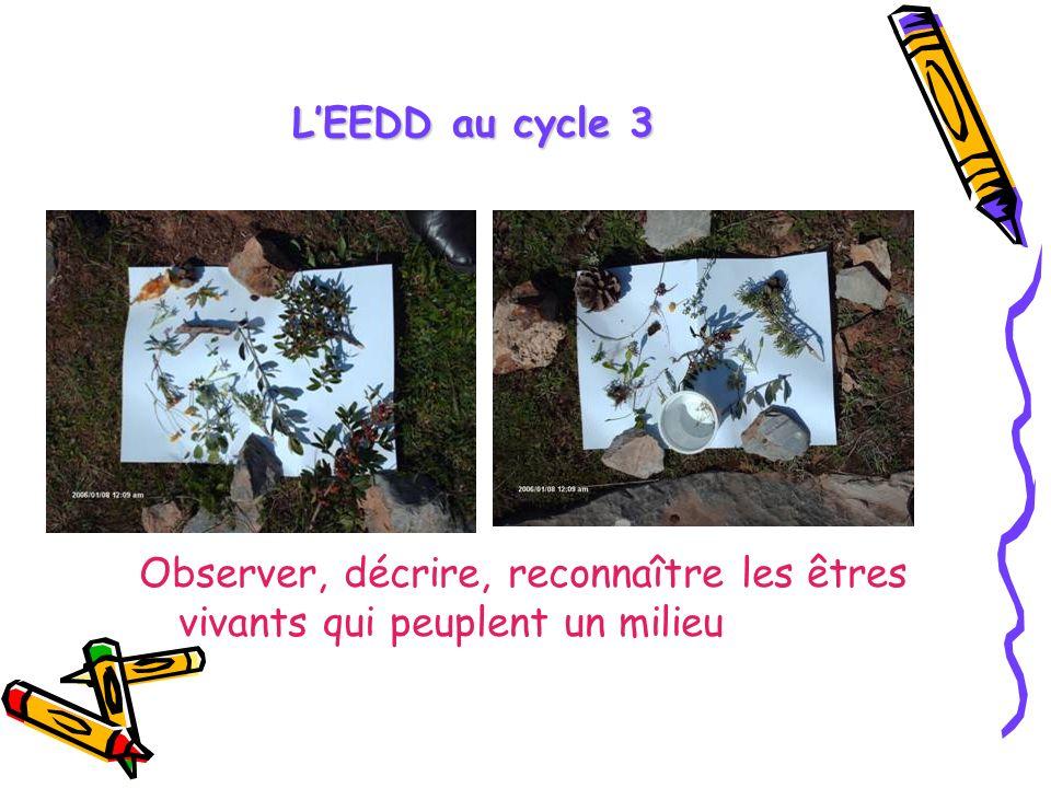 LEEDD au cycle 3 Observer, décrire, reconnaître les êtres vivants qui peuplent un milieu