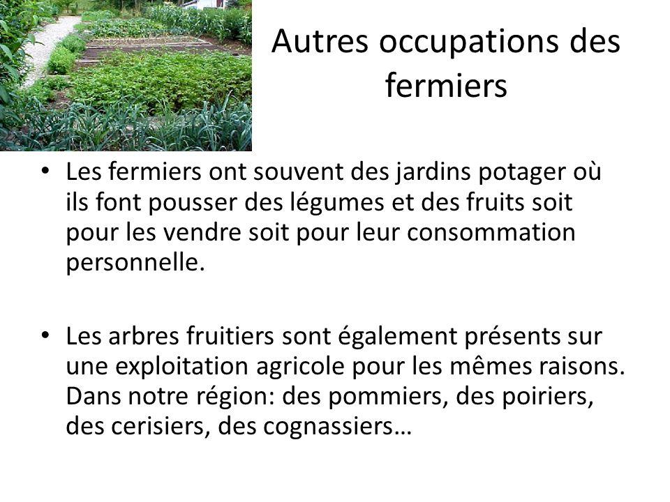 Autres occupations des fermiers Les fermiers ont souvent des jardins potager où ils font pousser des légumes et des fruits soit pour les vendre soit pour leur consommation personnelle.