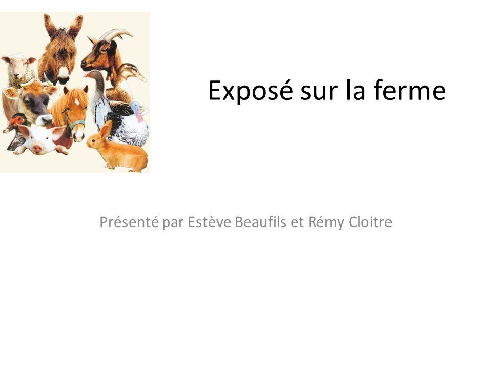 Exposé sur la ferme Présenté par Estève Beaufils et Rémy Cloitre