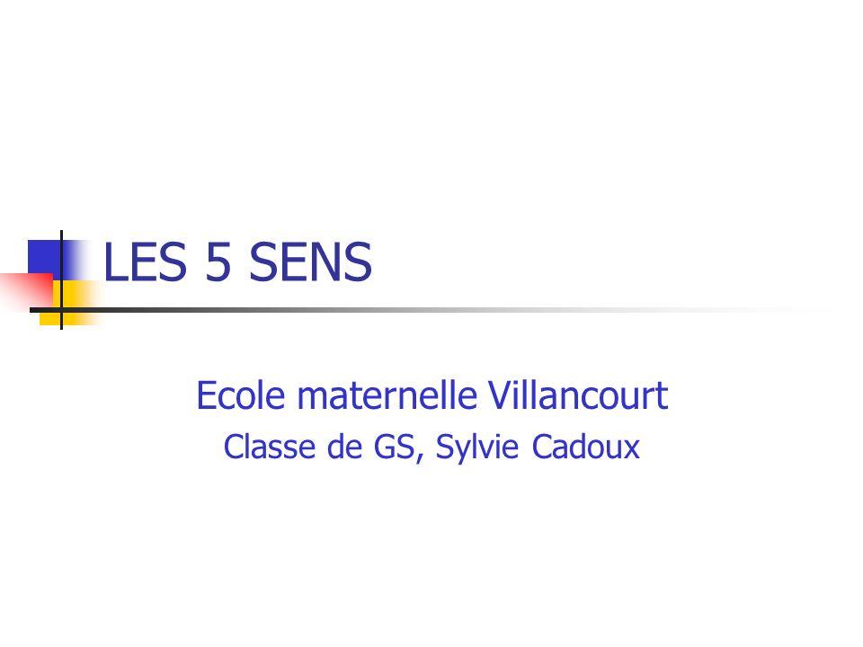 LES 5 SENS Ecole maternelle Villancourt Classe de GS, Sylvie Cadoux