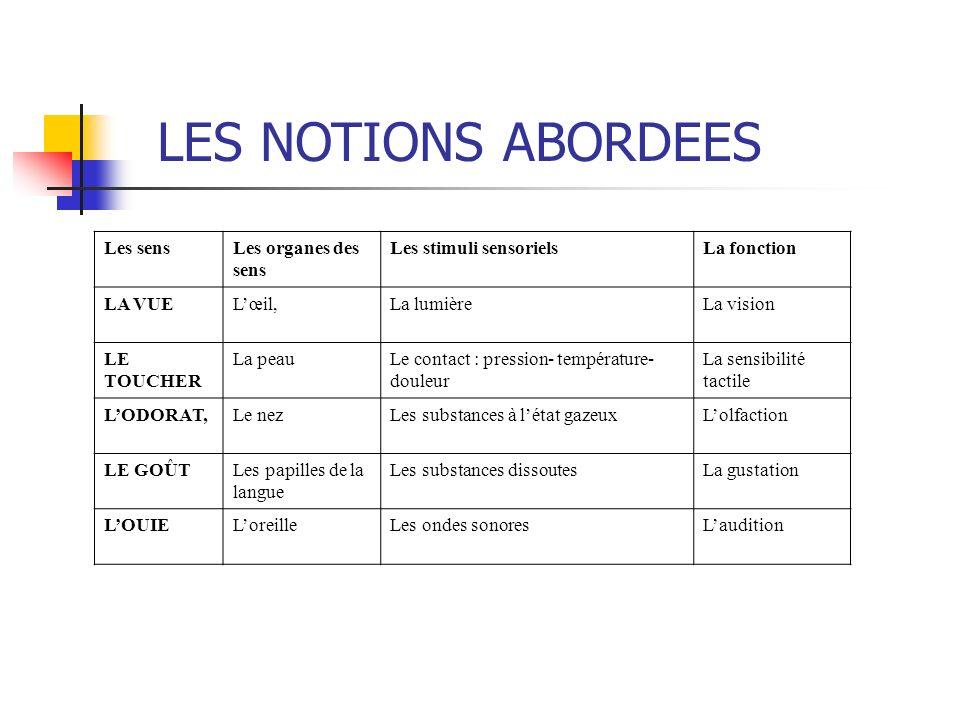 Louie Verbes dactions et vocabulaire