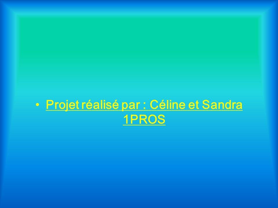 Projet réalisé par : Céline et Sandra 1PROS