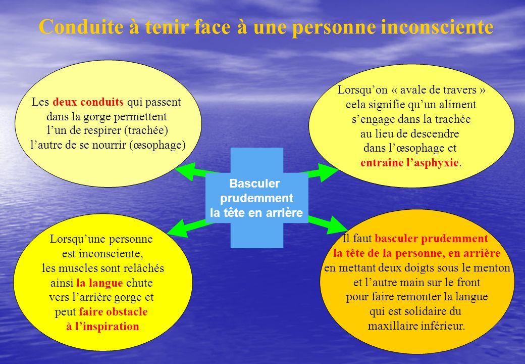 Conduite à tenir face à une personne inconsciente Les deux conduits qui passent dans la gorge permettent lun de respirer (trachée) lautre de se nourri