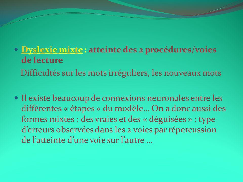 Dyslexie mixte : atteinte des 2 procédures/voies de lecture Difficultés sur les mots irréguliers, les nouveaux mots Il existe beaucoup de connexions n