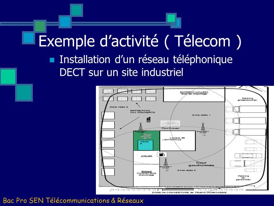 Bac Pro SEN Télécommunications & Réseaux Installation dun réseau téléphonique DECT sur un site industriel Exemple dactivité ( Télecom )
