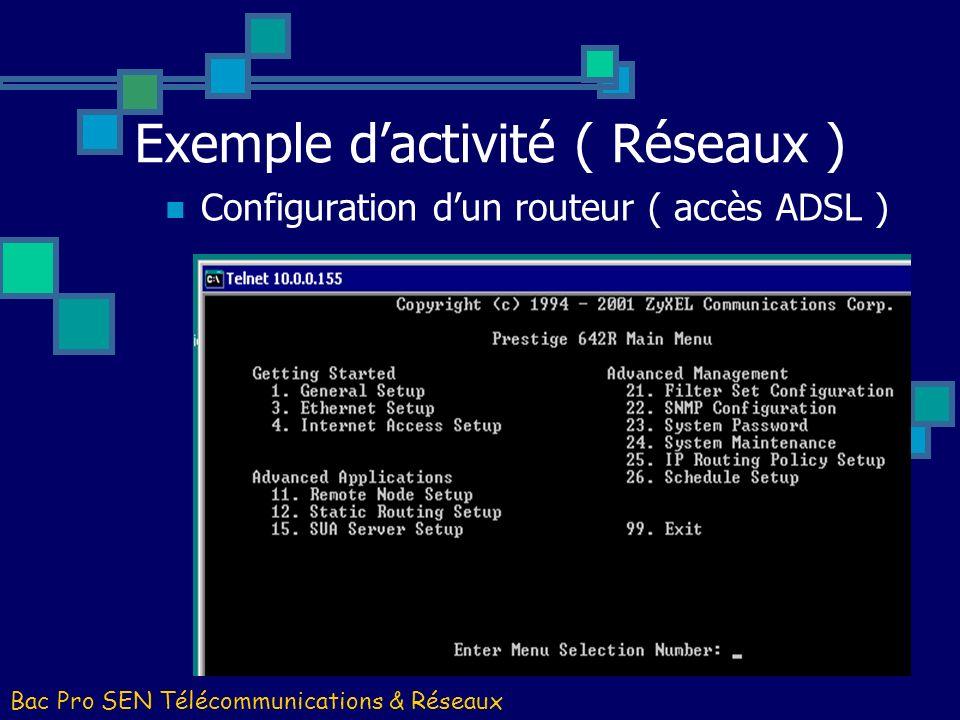 Exemple dactivité ( Réseaux ) Bac Pro SEN Télécommunications & Réseaux Installation dun serveur Windows 2003