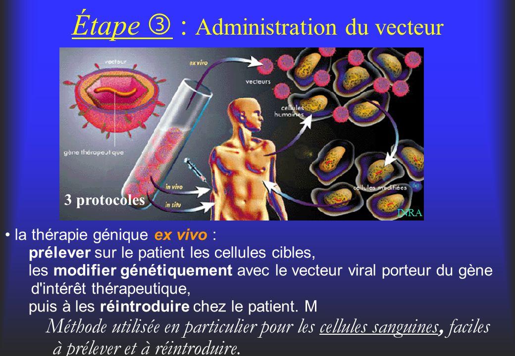 Étape : Administration du vecteur 3 protocoles la thérapie génique ex vivo : prélever sur le patient les cellules cibles, les modifier génétiquement a