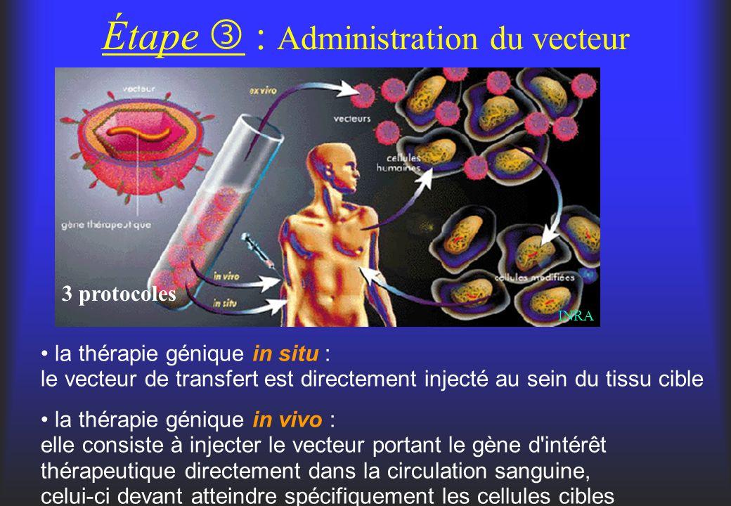 Étape : Administration du vecteur 3 protocoles la thérapie génique in situ : le vecteur de transfert est directement injecté au sein du tissu cible la
