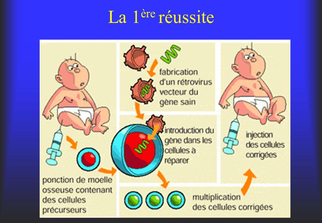 États des lieux - 376 essais concernant les cancers à l exemple des tumeurs gynécologiques, du SN,de la peau ou du système gastro-intestinal.