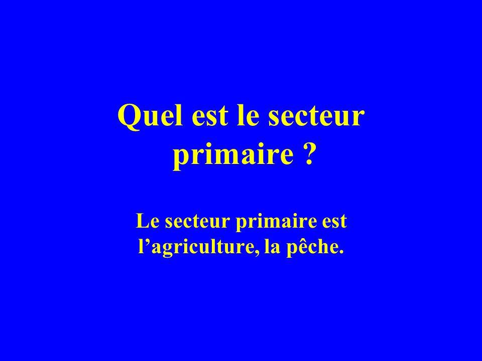 Quel est le secteur primaire ? Le secteur primaire est lagriculture, la pêche.