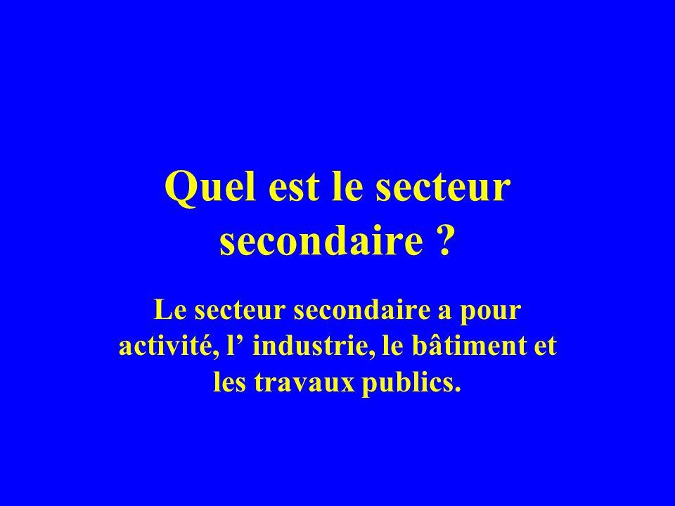 Quel est le secteur secondaire ? Le secteur secondaire a pour activité, l industrie, le bâtiment et les travaux publics.