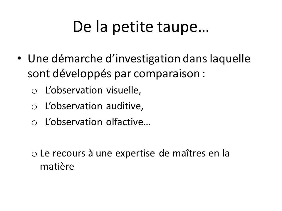 De la petite taupe… Une démarche dinvestigation dans laquelle sont développés par comparaison : o Lobservation visuelle, o Lobservation auditive, o Lo