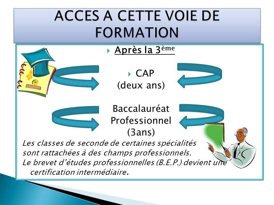 Après la 3 ème CAP (deux ans) Baccalauréat Professionnel (3ans) Les classes de seconde de certaines spécialités sont rattachées à des champs professio