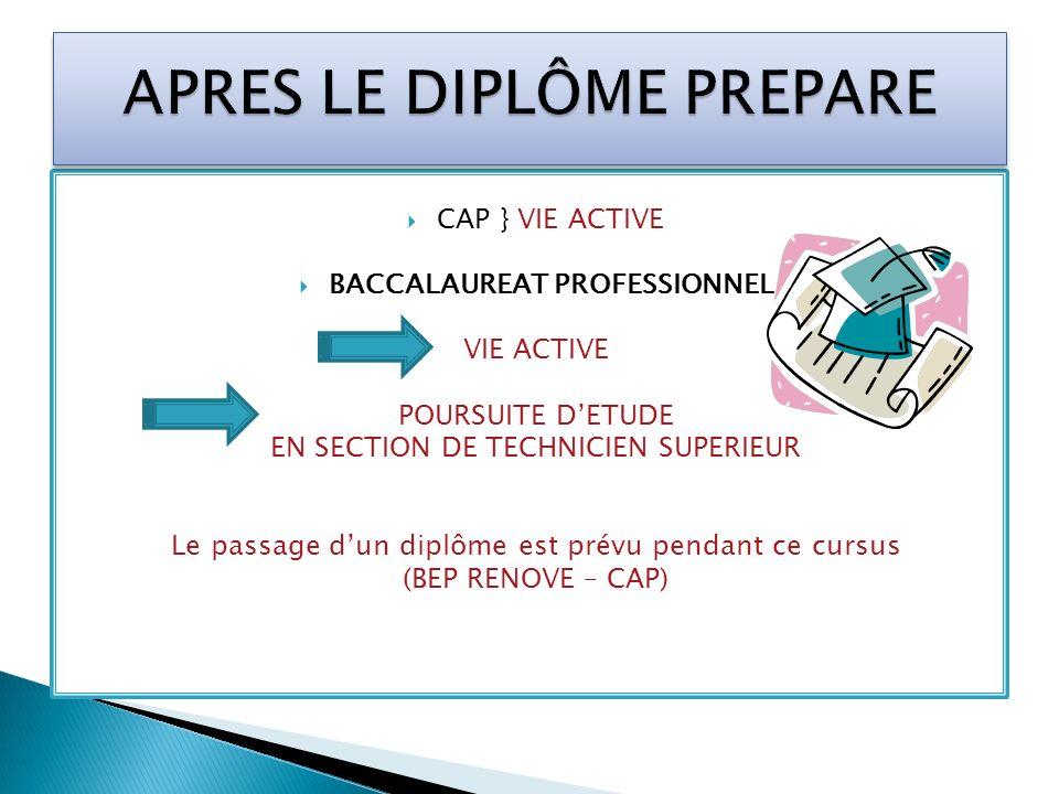 CAP } VIE ACTIVE BACCALAUREAT PROFESSIONNEL VIE ACTIVE POURSUITE DETUDE EN SECTION DE TECHNICIEN SUPERIEUR Le passage dun diplôme est prévu pendant ce