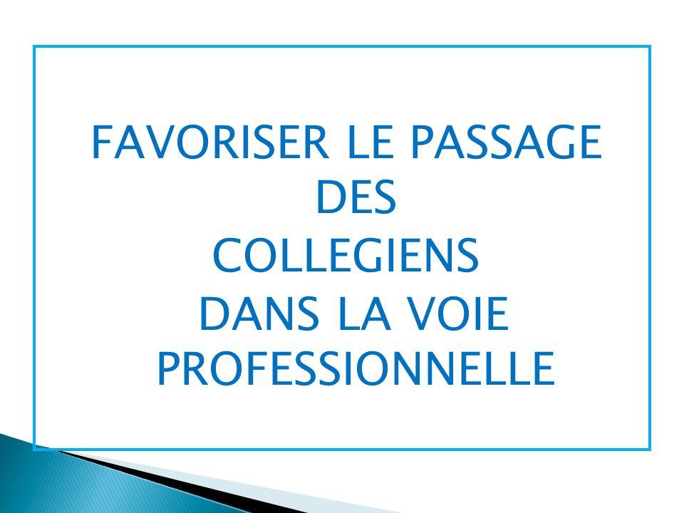 FAVORISER LE PASSAGE DES COLLEGIENS DANS LA VOIE PROFESSIONNELLE