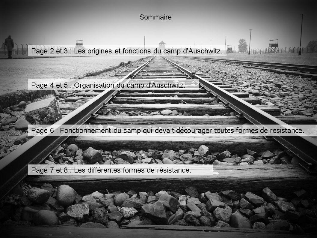 Sommaire Page 2 et 3 : Les origines et fonctions du camp d'Auschwitz. Page 4 et 5 : Organisation du camp d'Auschwitz. Page 6 : Fonctionnement du camp