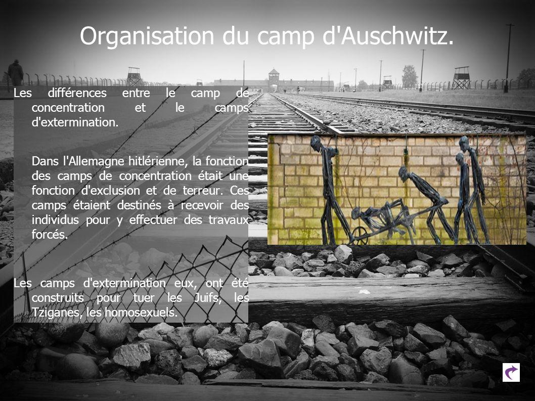 Organisation du camp d'Auschwitz. Les différences entre le camp de concentration et le camps d'extermination. Dans l'Allemagne hitlérienne, la fonctio