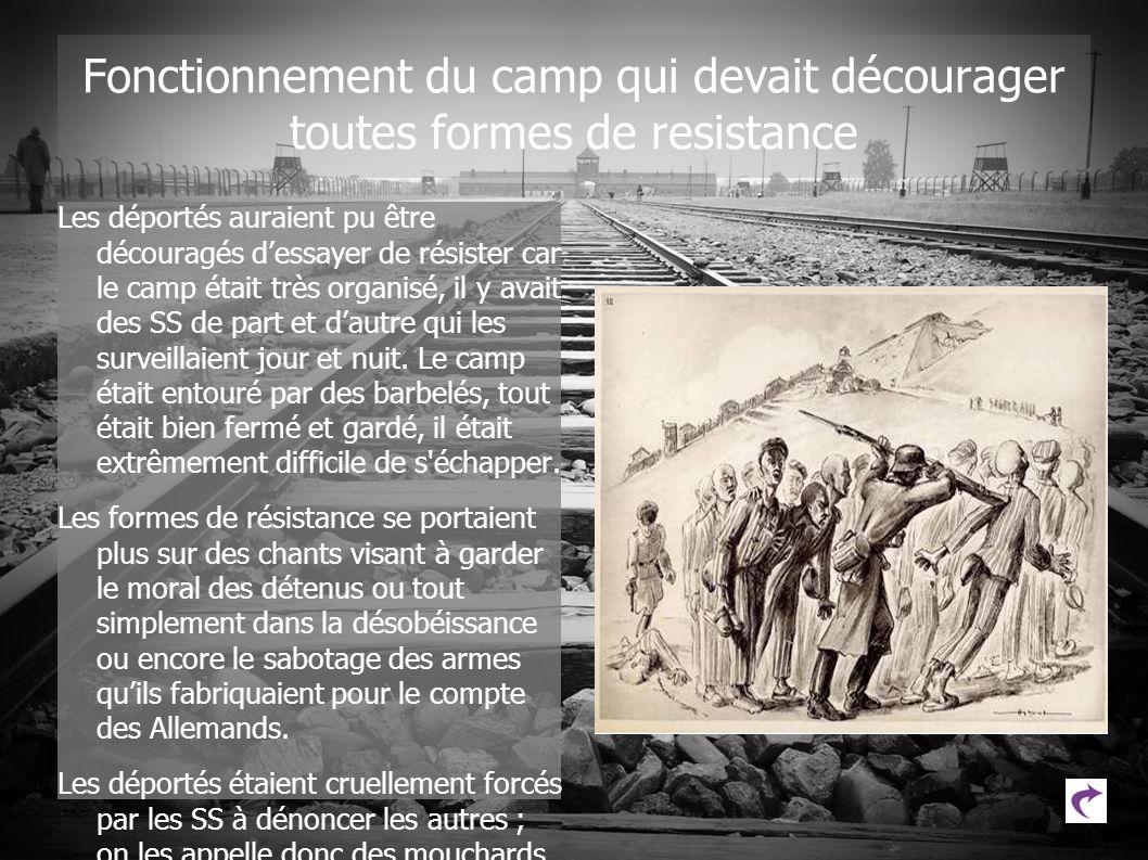 Fonctionnement du camp qui devait décourager toutes formes de resistance Les déportés auraient pu être découragés dessayer de résister car le camp éta