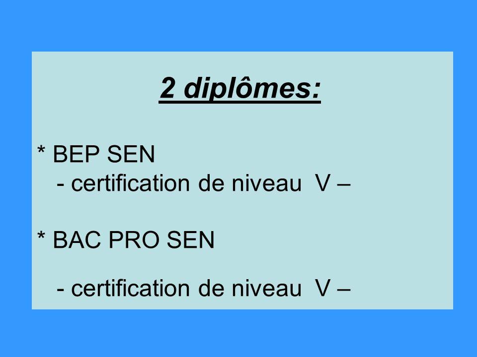 2 diplômes: * BEP SEN - certification de niveau V – * BAC PRO SEN - certification de niveau V –