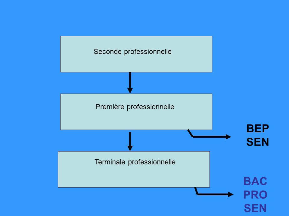 Seconde professionnelle Première professionnelle Terminale professionnelle BAC PRO SEN BEP SEN
